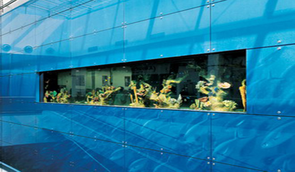 голубые стеклянные панели с аквариумом