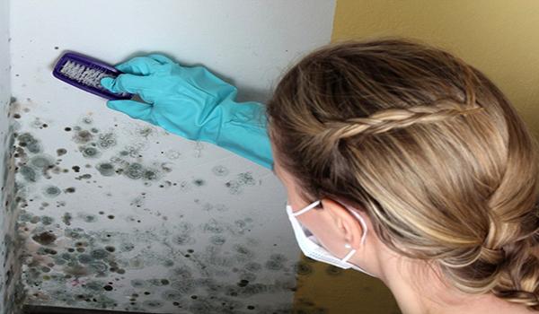 чистка стены от грибка щеткой