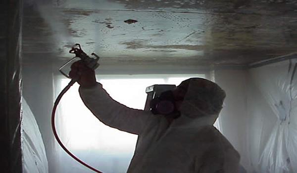 обработка стен специальным средством против грибка