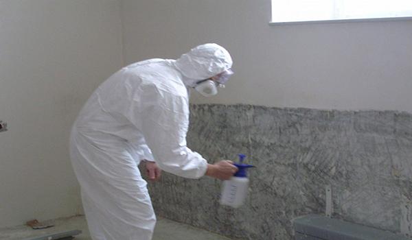 обработка стен против грибка