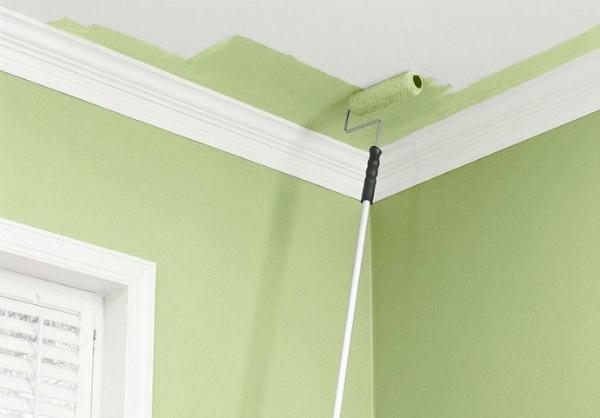 Зеленая краска для покраски потолка