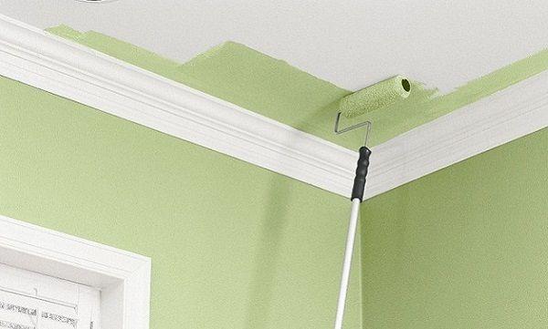 Стены и потолок можно красить водоэмульсионкой